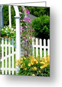 Flora Greeting Cards - Garden with picket fence Greeting Card by Elena Elisseeva