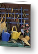 Glove Greeting Cards - Gardening Tools - FM000055 Greeting Card by Daniel Dempster