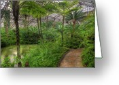 Green Water Greeting Cards - Garfield Park Conservatory Pond And Path Chicago Greeting Card by Steve Gadomski