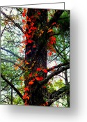 Autumn Art Greeting Cards - Garland of Autumn Greeting Card by Karen Wiles