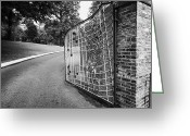 Elvis Greeting Cards - Gate And Driveway Of Graceland Elvis Presleys Mansion Home In Memphis Tennessee Usa Greeting Card by Joe Fox