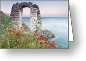 Gate Greeting Cards - Gate in the Poppies Greeting Card by Evgeni Dinev