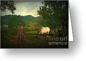 Horses Art Print Greeting Cards - Gate to the Past Greeting Card by Lianne Schneider
