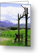 Split Rail Fence Greeting Cards - Gateway Greeting Card by Glenda Brunette