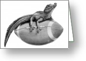 (murphy Elliott) Drawings Greeting Cards - Gator Football Greeting Card by Murphy Elliott