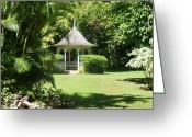 Rain Forrest Greeting Cards - Gazebo In The Tropics Greeting Card by Tracy Krapf