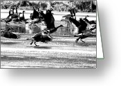 Goose Digital Art Greeting Cards - Geese on Ice Taking Flight Greeting Card by Bill Cannon