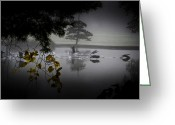 Mist Posters Greeting Cards Greeting Cards - Geese Taking Flight Greeting Card by Steve Buckenberger