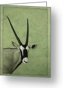 Wildlife Drawings Greeting Cards - Gemsbok Greeting Card by James W Johnson