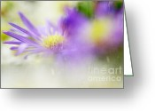 Floral Design Greeting Cards - Gentle Bliss Greeting Card by Jenny Rainbow