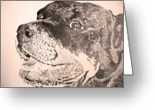 Robbi Musser Greeting Cards - Gentle Giant Greeting Card by Robbi  Musser