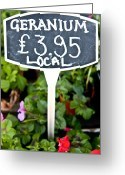 Green Tag Greeting Cards - Geranium  Greeting Card by Tom Gowanlock