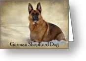 Purebreed Greeting Cards - German Shepherd Dog In Winter - Textured Greeting Card by Angie McKenzie