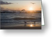 Surf Silhouette Greeting Cards - Germany, Mecklenburg Western Pomerania, Seagulls At Baltic Sea Greeting Card by Westend61