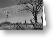 Windmill And Tree Greeting Cards - Ghost Farm Greeting Card by Sharon Elliott