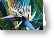 Bird Of Paradise Greeting Cards - Giant Bird of Paradise Greeting Card by Marionette Taboniar