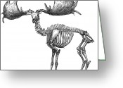Black Elk Greeting Cards - Giant Deer, 19th Century Artwork Greeting Card by