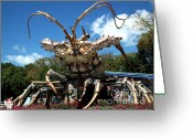 Rain Barrel Photo Greeting Cards - Giant Lobster Greeting Card by Tammy Link