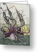 Galleon Greeting Cards - Giant Octopus Greeting Card by Denys Montfort