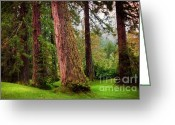 Barks Greeting Cards - Giant Sequoias. Benmore Botanical Garden. Scotland Greeting Card by Jenny Rainbow