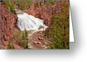 Yellowstone Landscape Art Greeting Cards - Gibbon Falls Greeting Card by Greg Norrell