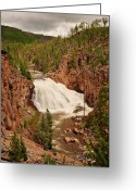 Yellowstone Landscape Art Greeting Cards - Gibbon Falls II Greeting Card by Greg Norrell