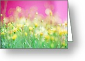 Pink Flower Prints Greeting Cards - Giddy in Pink Greeting Card by Amy Tyler