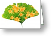 Image Overlay Greeting Cards - Ginkgo And Nerve Cells Greeting Card by Pasieka