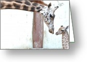 Color Bending Greeting Cards - Giraffe Greeting Card by Floridapfe from S.Korea Kim in cherl
