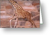 Wildlife Sculpture Greeting Cards - Giraffe Greeting Card by Hans Droog