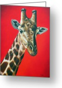 Giraffe Greeting Cards - Giraffe Greeting Card by Ilse Kleyn