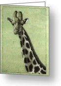 African Greeting Cards - Giraffe Greeting Card by James W Johnson