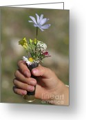 Holding Flower Greeting Cards - Girl holding flowers in a rifle cartridge Greeting Card by Sami Sarkis
