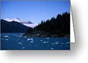 Winter Views Greeting Cards - Glacial Ice Floats In The Prince Greeting Card by Stacy Gold