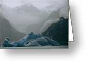 River Scenes Greeting Cards - Glaciers And Icebergs In Shakes Lake Greeting Card by Sarah Leen
