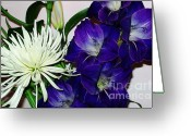 Purple Gladiola Greeting Cards - Gladiola and Spider Mum Greeting Card by Marsha Heiken