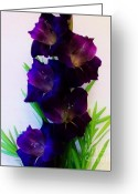 Purple Gladiola Greeting Cards - Glads Close up Greeting Card by Marsha Heiken