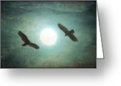 Bird Framed Prints Greeting Cards - Gliding Greeting Card by Thomas York