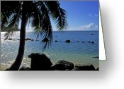 Beach Landscapes Greeting Cards - Glistening Anini Beach Greeting Card by Kathy Yates
