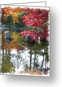 Japanese Maple Greeting Cards - Glorious Fall Colors Reflection with Border Greeting Card by Carol Groenen