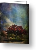 Neighborhood Greeting Cards - Glory Greeting Card by Laurie Search
