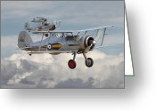 Raf Digital Art Greeting Cards - Gloster Gladiator Greeting Card by Pat Speirs