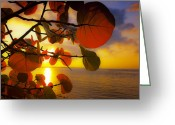 Tropical Sunset Greeting Cards - Glowing Red II Greeting Card by Stephen Anderson