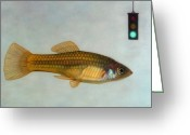 Gold Greeting Cards - Go Fish Greeting Card by James W Johnson