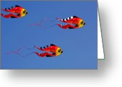Bruster Greeting Cards - Go Fly A Kite Greeting Card by Clayton Bruster