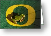 Oregon Wildlife Digital Art Greeting Cards - Go Oregon Ducks Greeting Card by Cindy Wright
