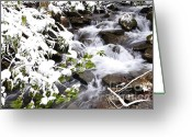 Williams Greeting Cards - Go with the Flow Greeting Card by Thomas R Fletcher