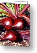 Carolinestreet Greeting Cards - Gods Kitchen Series No 2 Beetroot Greeting Card by Caroline Street