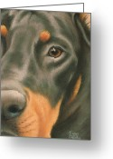 Dobermann Greeting Cards - Goggie Doberman Greeting Card by Karen Coombes