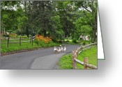 C Crespo Greeting Cards - Going for a walk Greeting Card by Crespo